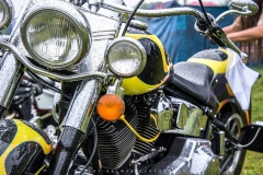 RNBF-Custom bike show-078